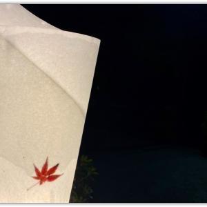 夜の栗林公園(娘のお土産話)4