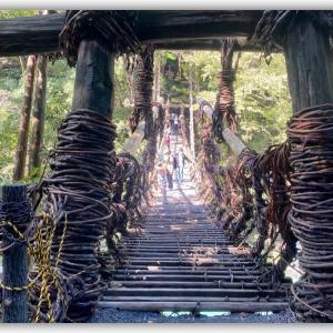 祖谷のかずら橋や蜘蛛の巣(ゆ)の如く…