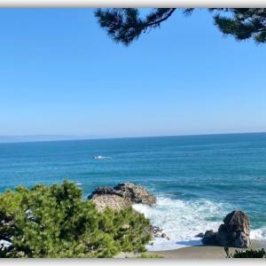 龍馬さんと同じ海を眺める