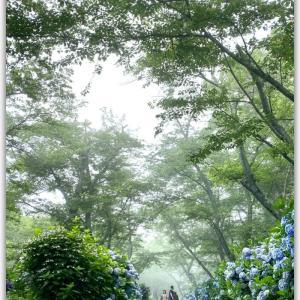 6月最後の日曜日は瀬戸内海国立公園内の紫雲出山へ