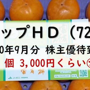 レシップホールディングスから株主優待が到着(2020年9月分)