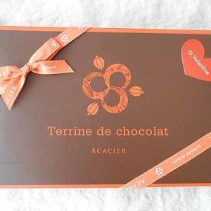 ACACIER Terrine de chocolat
