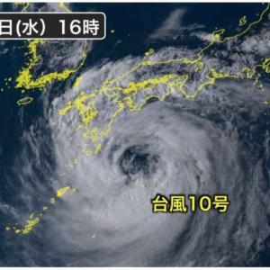 台風と愛猫達!!野生の本能発揮で警戒?