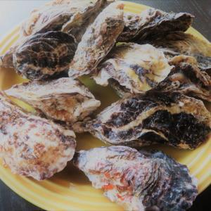 レンチン牡蛎☆彡メルカリ