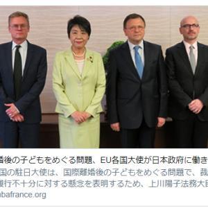国際離婚 EU 日本政府