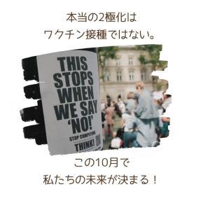 """本当の2極化はワクチン接種ではない!〜""""この10月で日本の未来が決まる"""""""