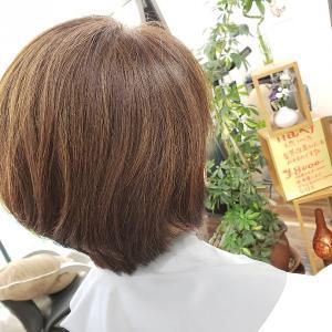 美容師さんにお知らせ キュビズムカット体験講習会 in HIMEJI