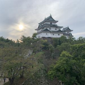 和歌山城に行ってきたお話