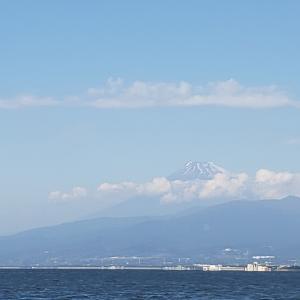 沼津(静浦)カワハギとタイラバ