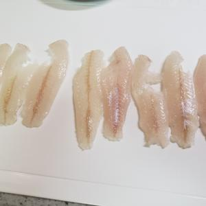 シロギスの皮引きorz…