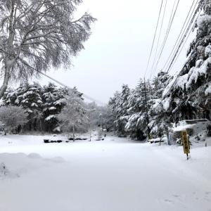 新雪の西岳 ①