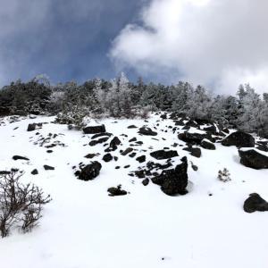 再び雪の西岳へ③