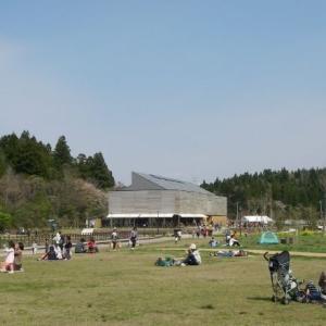 柏崎市 夢の森公園のイベント