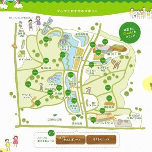 柏崎市 夢の森公園 気軽に散策!