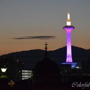 あっという間の京都旅行…帰宅は筋肉痛とともに