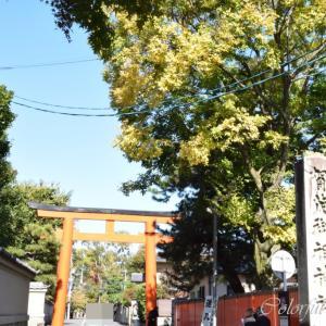 下鴨神社~鴨川デルタ~京都御苑方面へ