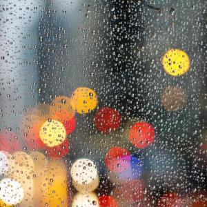 寒い寒い雨の1日はおこもりデー