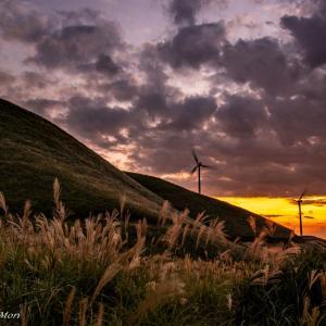 秋風の見える丘