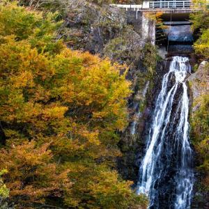 椎葉村の滝