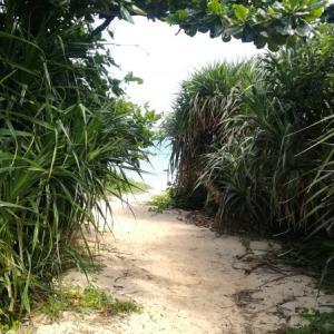 県民の森で久しぶりのキャンプと海水浴 ー今週のポートフォリオー