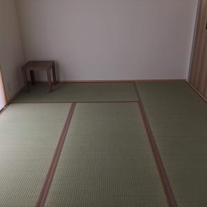 【 イグサ畳 vs 和紙畳】どっちが良かった?1年半住んでみて思うこと。