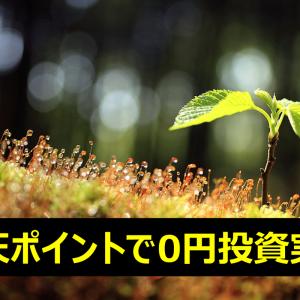 【20ヶ月目】楽天ポイントで0円投資実績【累計:47,344円】