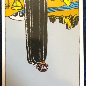今日のカード(カップの5 逆)