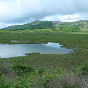 【八島湿原 一周散歩】何処か別の国に行ったみたいな世界!