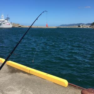 能生漁港で釣りをして、マリンドーム能生で海の幸を頂こう!