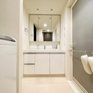 洗面所収納の連載はじめます 洗面所の全体像