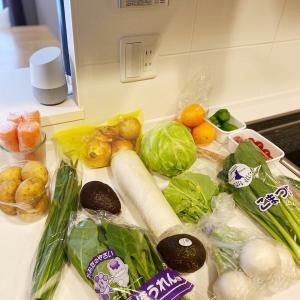 収納以上に買いすぎたとき 野菜と冷凍品