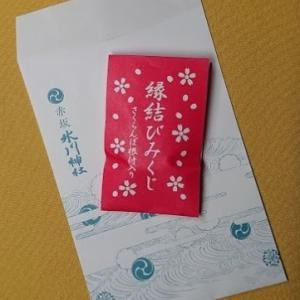 【赤坂 氷川神社】縁結びみくじ