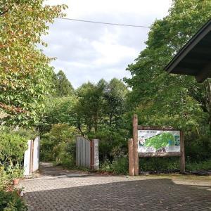 ちょっと色づく軽井沢~軽井沢植物園とモカフロート