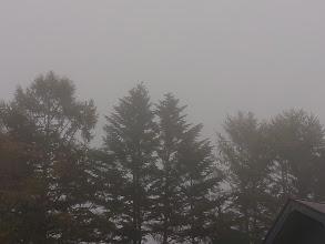 霧の朝に…決行する!