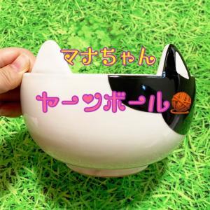 マナちゃんの清水焼ヤーンボール届いた(^∀^)!