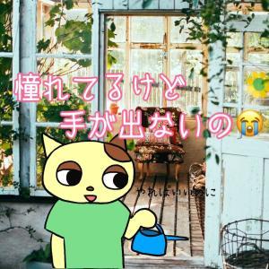 DIYとガーデニング☆憧れの生活を作ってみたいわ〜(∩∀`*)