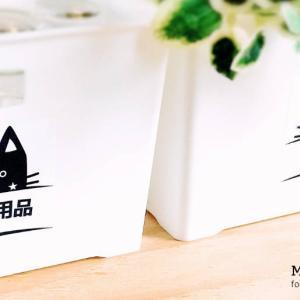 収納ラベル | 食品×衣類収納 | くろねこちゃんの男前な収納ラベル(日本語ver.)++