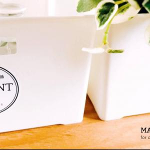 収納ラベル | 食品×衣類収納 | 円型おしゃれな収納ラベルでパントリーを素敵に収納++