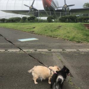 所沢航空公園