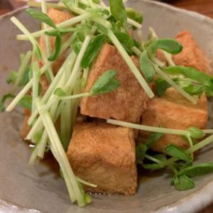 【石垣島】島の食べものや南風(ぱいかじ)~ 美味しい島料理を堪能できる居酒屋さん