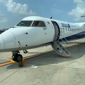 【搭乗記】ANA503便 大阪(伊丹)ー宮崎 ~ ボンバルディアDHC8-Q400搭乗記