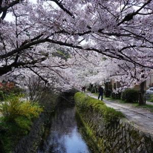 京都は新学期再開!
