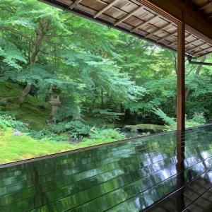瑠璃光院(美しい庭)
