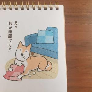 《2020年カレンダー》柴犬好き必買!今年もセリアの卓上わんにゃんカレンダーを購入しました。