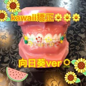 8月のkawaii矯正テーマは「向日葵」です!
