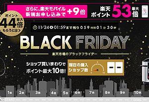 11/24 01:59まで 楽天ふるさと納税 BLACK FRIDAY