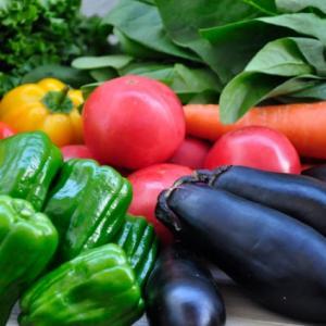 長生きするためには食生活がカギ・野菜をたくさん摂ろう!