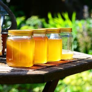 ハチミツに合う健康に良い、食べ物or飲み物4選!