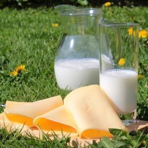 美肌効果があるのに食べない女性は損?美味しいチーズの種類6選!