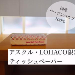 【LOHACO限定】ごろっとチキンのスパイシーカレーを作って食べてみたよ